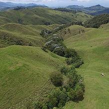 Recuperando cuencas en el Valle del Cauca