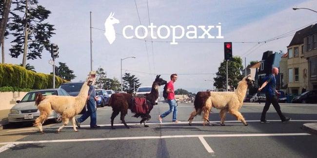 cotopaxi llama